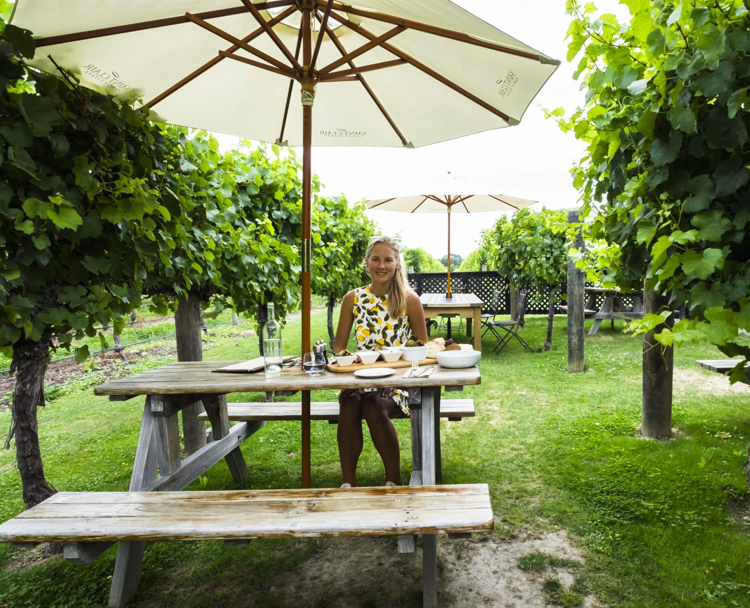 NZ: clair vinyard