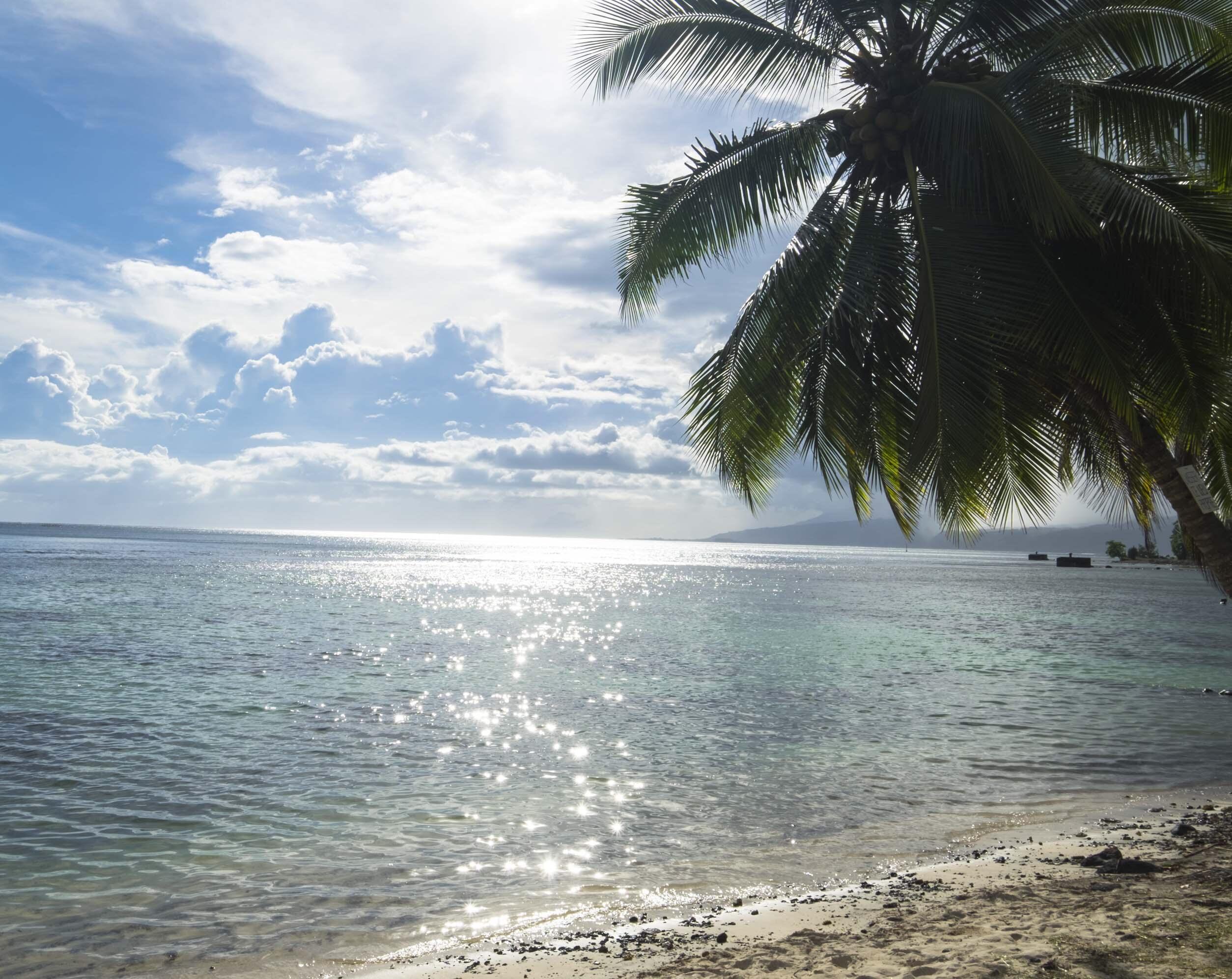 FP: tahiti beach